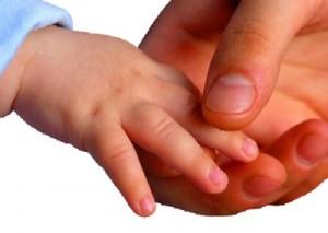 Baby_s_Hands_706033