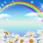 Daisies and rainbow against the sky
